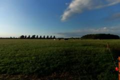 Landschap Grijpskerke